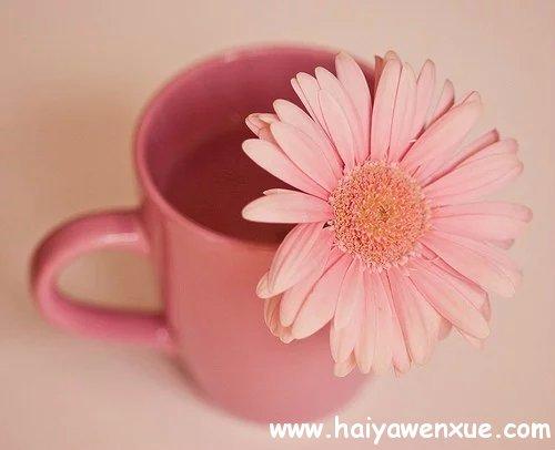 在最想安定的时候,恰巧遇到你_www.haiyawenxue.com