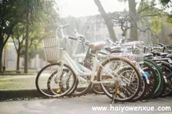 单车少年_www.haiyawenxue.com