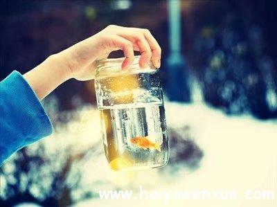 余生好长,你好难忘_www.haiyawenxue.com