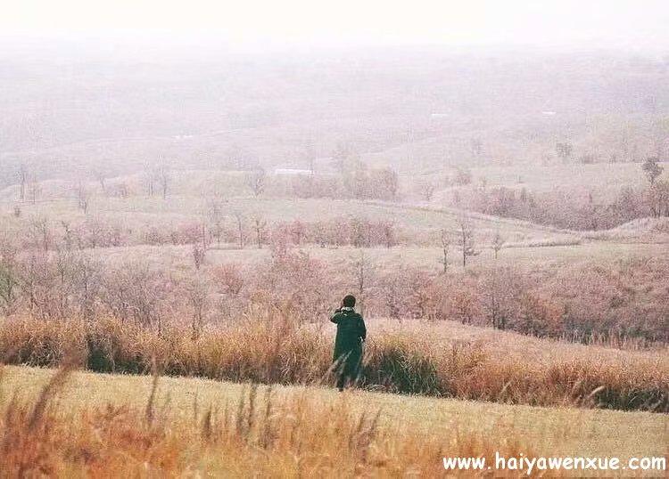 风弹琵琶,零落了半城烟沙_www.haiyawenxue.com