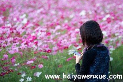错把陈醋当成墨,写尽半生都是都是酸_www.haiyawenxue.com